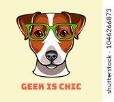 jack russell terrier geek. dog... | Shutterstock .eps vector #1046266873
