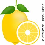 lemon vector isolated on white... | Shutterstock .eps vector #1046348446