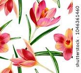crocus flowers seamless pattern....   Shutterstock . vector #1046361460