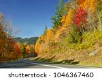 Trees with blazing fall colors lining a winding road on Foothills Parkway West in the Great Smoky Mountains National Park in late October.