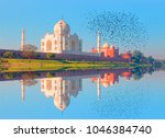 taj mahal monument reflecting... | Shutterstock . vector #1046384740