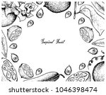 tropical fruit  illustration... | Shutterstock .eps vector #1046398474