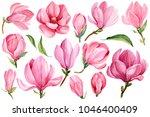 big set of blooming magnolia... | Shutterstock . vector #1046400409