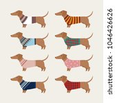 dachshund character wearing... | Shutterstock .eps vector #1046426626