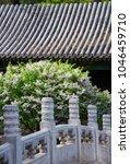 park and garden buildings | Shutterstock . vector #1046459710