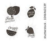 vector fruit design | Shutterstock .eps vector #1046463139