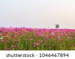 soft focus amazing scenery of...   Shutterstock . vector #1046467894