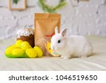 white rabbit near easter eggs... | Shutterstock . vector #1046519650