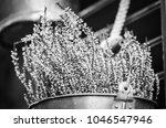 summer flowers close up view | Shutterstock . vector #1046547946