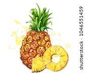 watercolor illustration of... | Shutterstock . vector #1046551459