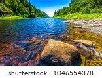 Forest river stones landscape