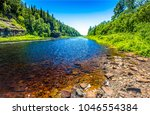 forest river landscape. summer... | Shutterstock . vector #1046554384
