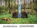 Kampinos Forest  Poland   Apri...