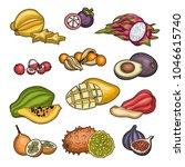 fruits. tropical fruit.... | Shutterstock .eps vector #1046615740