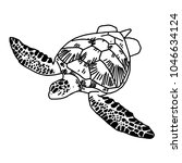 hand draw sea turtle  vector | Shutterstock .eps vector #1046634124