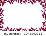 red withered tulip petals frame ... | Shutterstock . vector #1046643313