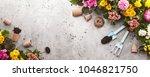 gardening tools on shale... | Shutterstock . vector #1046821750