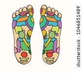 foot reflexology scheme with... | Shutterstock .eps vector #1046851489