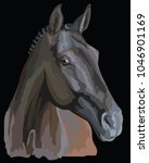 Colored Portrait Of Trakehner...