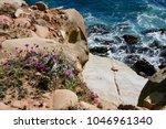 pacific ocean meets the rocky...   Shutterstock . vector #1046961340