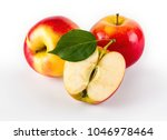 ripe juicy apples with leaves ... | Shutterstock . vector #1046978464