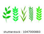 set of green leaves  herbs ... | Shutterstock .eps vector #1047000883
