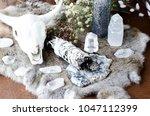 sage skull neutral still life | Shutterstock . vector #1047112399