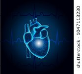 polygonal human heart  in low... | Shutterstock .eps vector #1047113230