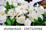 shot of flower   candle used... | Shutterstock . vector #1047124366