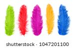 Colored Feathers. Carnival.