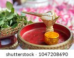 conch shell for thai wedding... | Shutterstock . vector #1047208690