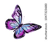 Stock photo beautiful pink butterfly watercolor isolated on a white 1047323680