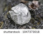 natural diamond nestled in... | Shutterstock . vector #1047373018