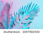 tropical and palm leaves in... | Shutterstock . vector #1047402433