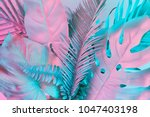 tropical and palm leaves in... | Shutterstock . vector #1047403198