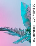 tropical and palm leaves in... | Shutterstock . vector #1047404530