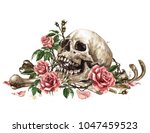 human skull surrounded by... | Shutterstock . vector #1047459523