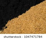 Small photo of Rice husk and rice husk ash after burning rice husk use prepare for agriculture.