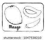 black and white fruit sketch... | Shutterstock .eps vector #1047538210