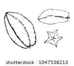 black and white fruit sketch... | Shutterstock .eps vector #1047538213