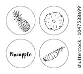 black and white fruit sketch... | Shutterstock .eps vector #1047538699
