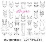 fashionable  female lingerie... | Shutterstock .eps vector #1047541864