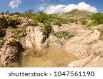desert creeks  mexico. | Shutterstock . vector #1047561190