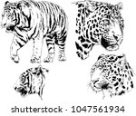 vector drawings sketches... | Shutterstock .eps vector #1047561934