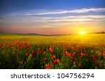 field with green grass and red... | Shutterstock . vector #104756294