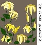 yellow flower flora vector... | Shutterstock .eps vector #1047571384