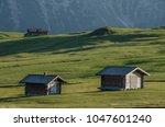 summer in alpe di siusi seiser... | Shutterstock . vector #1047601240