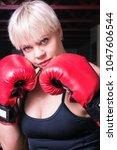 portrait of a beautiful blonde... | Shutterstock . vector #1047606544