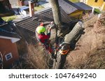 arborist man cutting a branches ... | Shutterstock . vector #1047649240