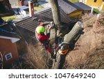 arborist man cutting a branches ... | Shutterstock . vector #1047649240
